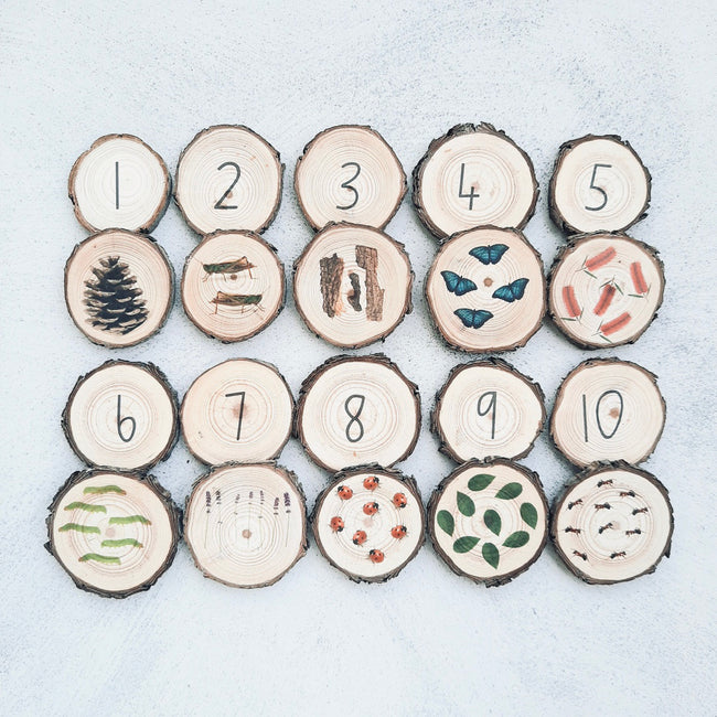 1-10 Nature Memory Match (Tree Slices)
