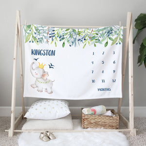 Kingston Elephant Milestone Baby Blanket for Baby Boy