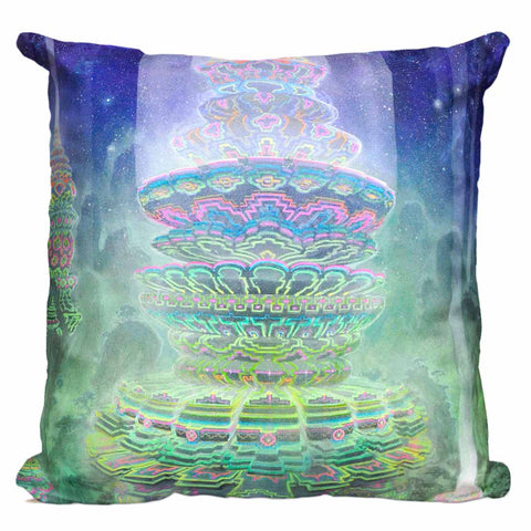 Manifestination Pillow