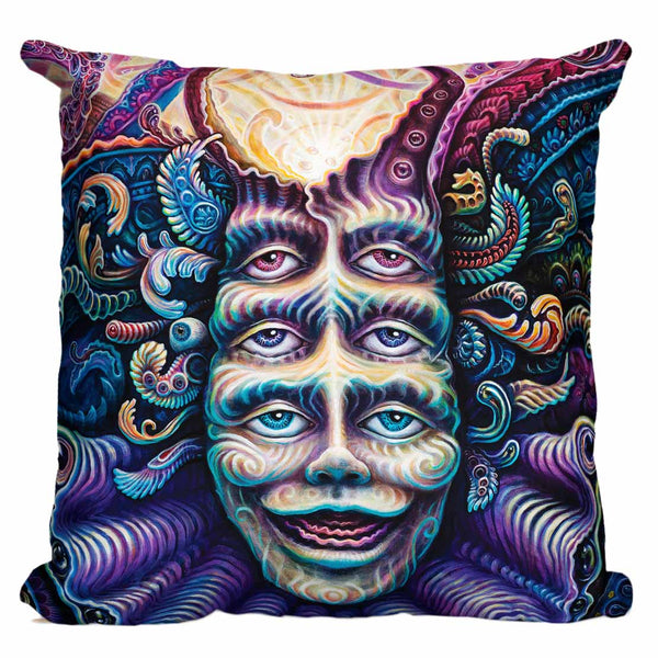 Are You Shpongled Pillow