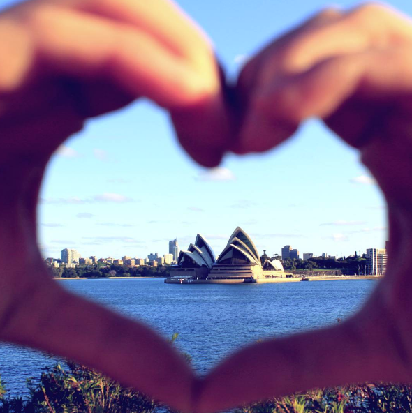 fly-guy-heart-sydney