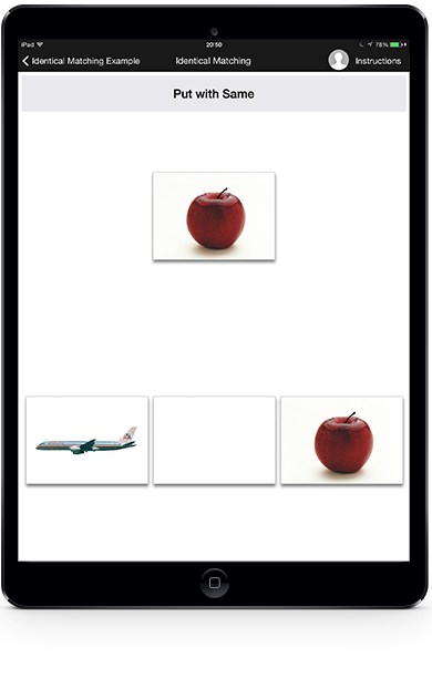 Screenshot of apple as the target card, with a blank card as distractor