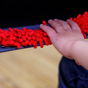 A Child Touching an Anemone Desk Fidget