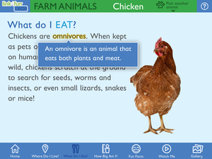 Link4fun Farm Animals Book