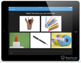 See.Touch.Learn.  Site Edition Autism Education App for iPad