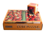 Fruit Cube Puzzle in the box