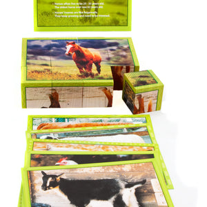Farm Animal Puzzle with Fun Facts