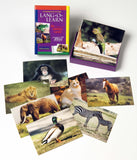 Lang-O-Learn Animal Cards