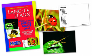 Insects & Bugs Theme Kit