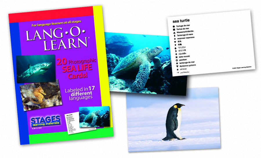 Lang-O-Learn Sea Life Cards