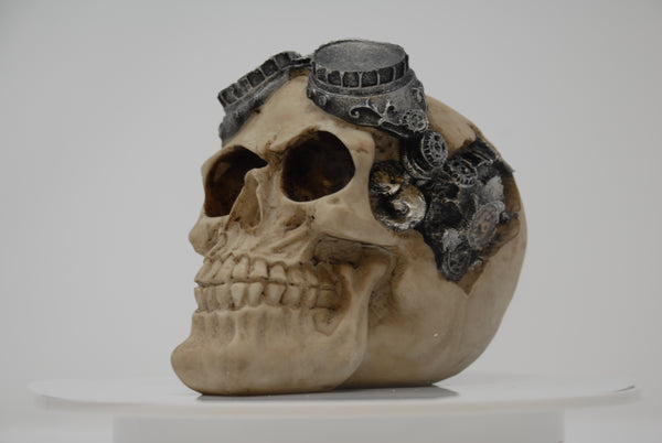 (SK08) Resin Skull with Goggles and Gear