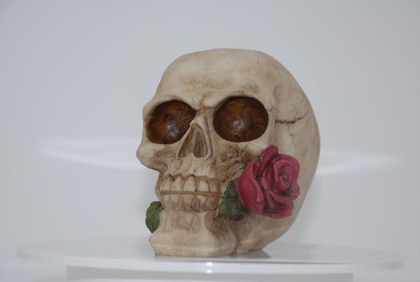 (SK04) Resin Skull with Rose in Mouth