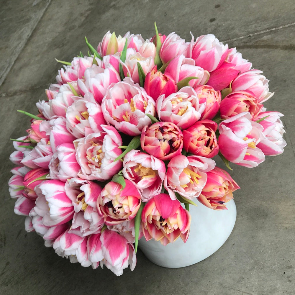 Load image into Gallery viewer, dutch tulips