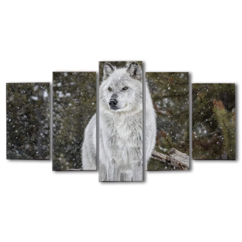 White wolf wall art