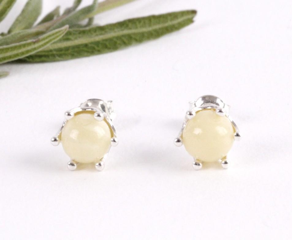 White Amber Stud Earrings - Amber SOS