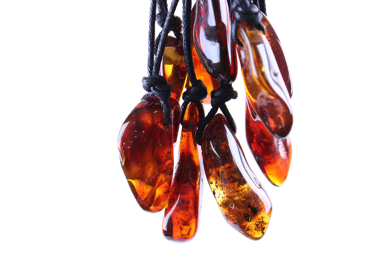 Natural Amber Amulet Pendant with 2 X 40 million year old Fly