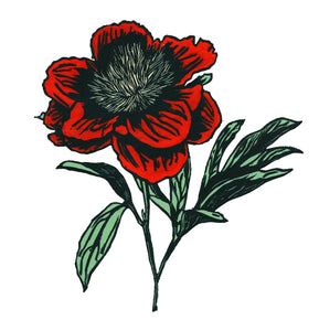 'Peony in Bloom' Limited Edition Original Linocut