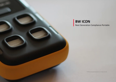 BW Icon Review  - Webinar