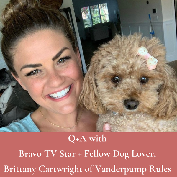 Q+A with Bravo TV Star and Fellow Dog Lover, Brittany Cartwright of Vanderpump Rules