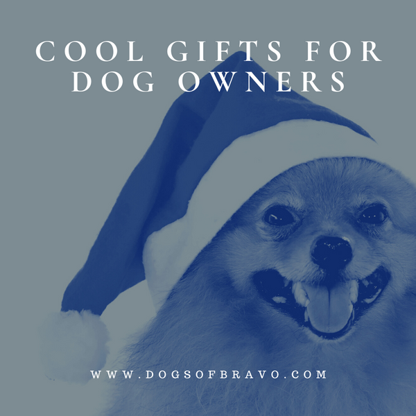Cool Gifts for Dog Owners | Christmas Gifts