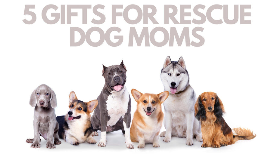 Gifts for Rescue Dog Moms