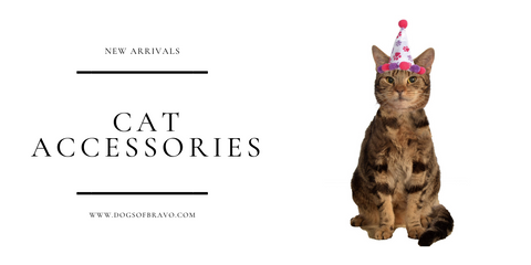 Birthday Girl Cat Hat Gifts for Cat Lovers