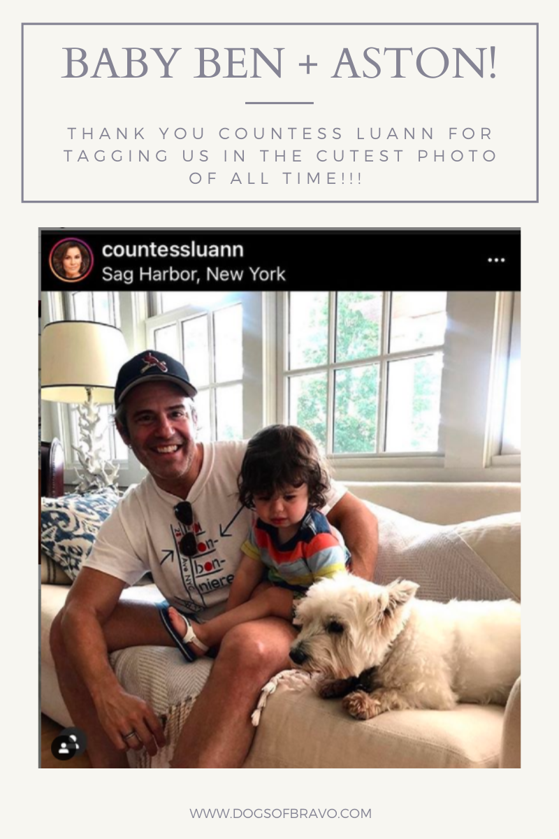 Dog Lovers Andy and Ben Cohen with Countless Luann's dog Aston