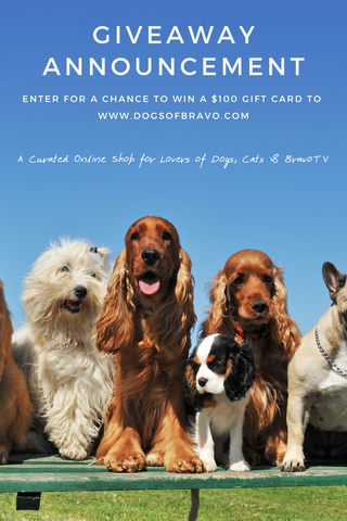 dogs of bravo giveaway