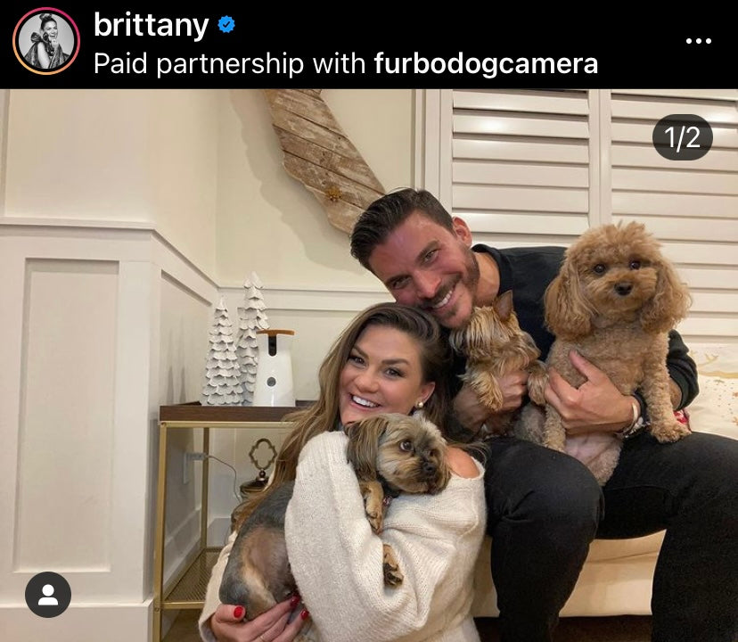 Brittany Cartwright and Jax Taylor with their dogs Kingsley, Monroe and Sophie