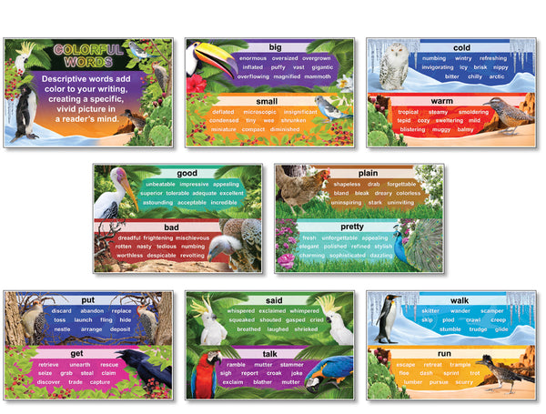 Bulletin Board Set - Colorful Words