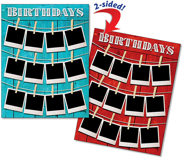 Birthday Snap Shot Quick Flip Poster