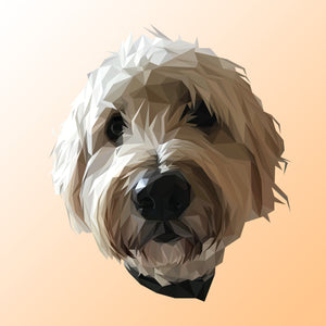 Poly Pawtrait (Design Only)