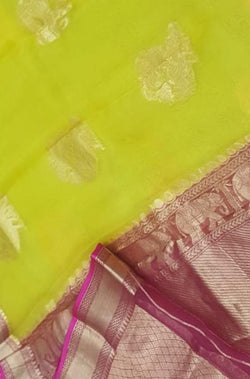 Yellow Handloom Kanjeevaram Organza Elephant and Peacock Design Saree