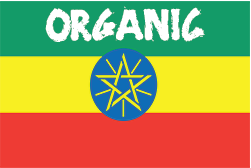 Single Origin: Ethiopia Guji Natural Gr1 Organic (Light Roast)