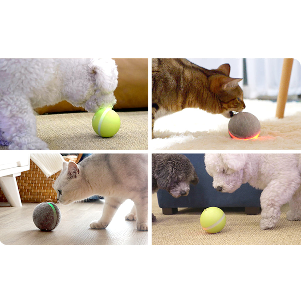 Electric Pet Ball