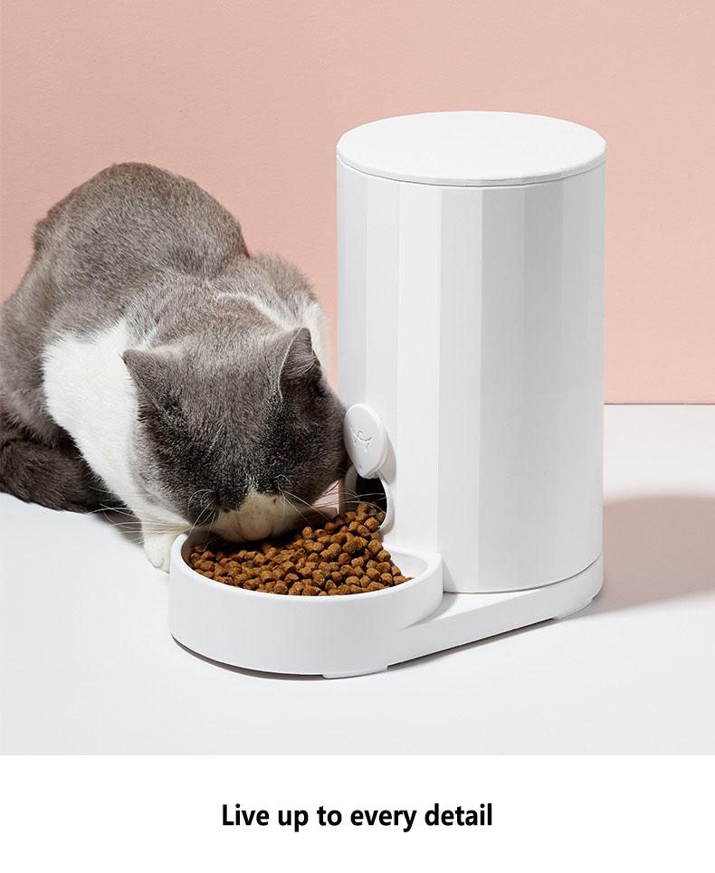 Automatic Pet Water Dispenser and  Manual Dry Food Feeder - Exquisite Supplies LLC