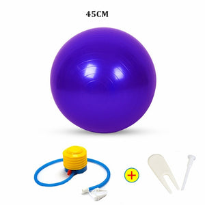 Fitness Ball with Pump
