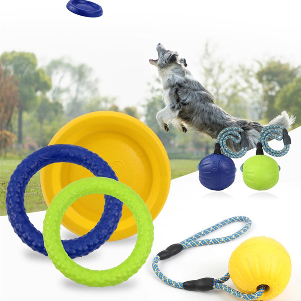 Interactive Toys Designed for Dogs