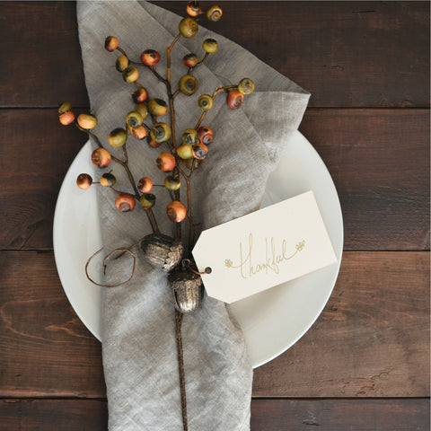 cloth napkins thanksgiving dinner table sustainable design