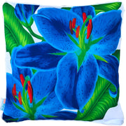 Pretty Cushion Cover with piping 50cm x 50cm - Sunburst Outdoor Living