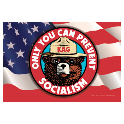 Smokey Bear Socialism 6x4 Rectangle Magnet