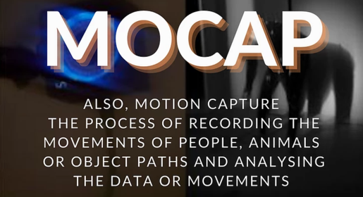 What On Earth Are We Talking About!? A glossary of mocap terms