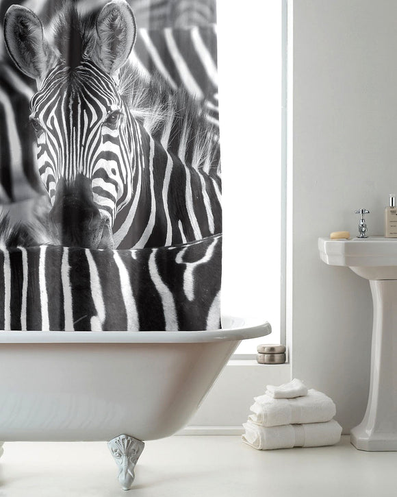 Zebra Pictorial Hookless Shower Curtain