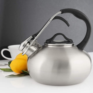 Chantal Classic Stainless Steel Loop Teakettle