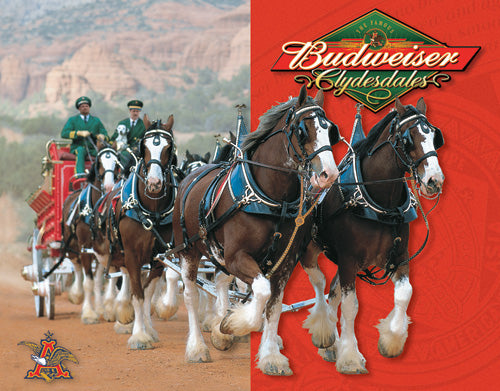 BUDWEISER - CLYDESDALES - LARGE METAL TIN SIGN 31.7CM X 40.6CM GENUINE AMERICAN MADE