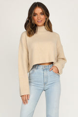Shine A Light Knit (Beige)