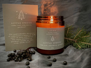 Little Spruce Winter Candle