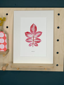Ivy Mounted Botanical Print (Unframed)