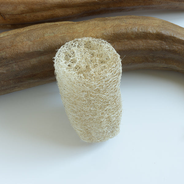 Organic All Natural Unpeeled Loofah Sponge