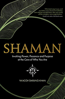 Book: Shaman: Invoking Power, Presence and Purpose at the Core of Who You Are